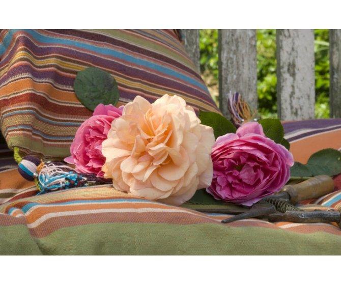 le jardin de marie h tels colodge. Black Bedroom Furniture Sets. Home Design Ideas